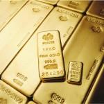 2010-PAMP-leaflet-outside-english new_303 216 gold