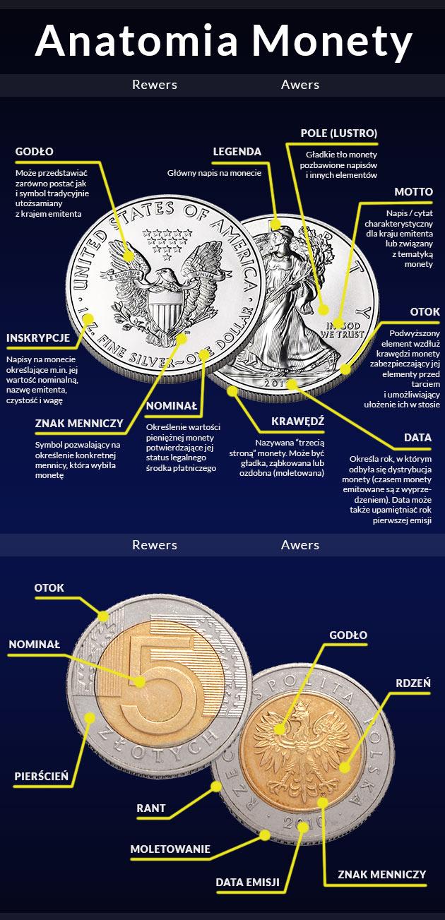 anatomia-monety2