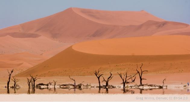 Martwe Bagno w Namibiii (Greg Willis, Denver)